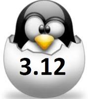 kernel312