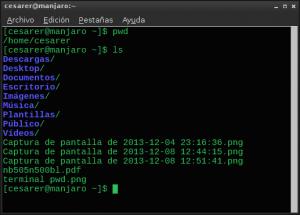 terminal ls 01